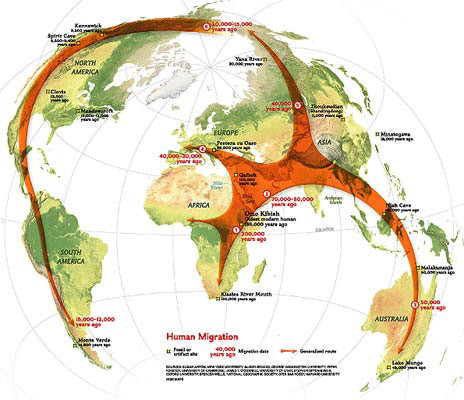 Migration Patterns 2012 | Infographics | Atlas Van Lines