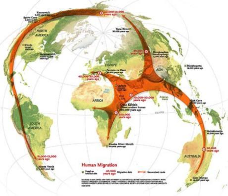 Global human migration patterns