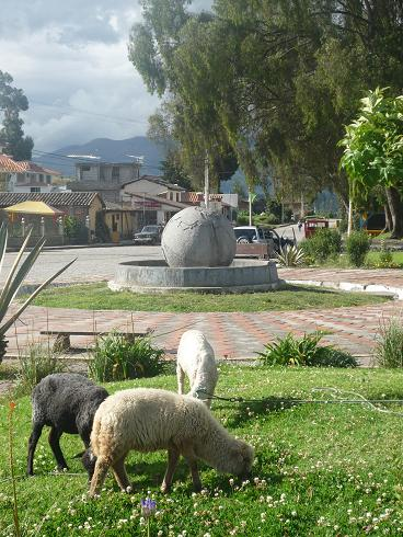A very calm and peaceful equator monument with sheep grazing.