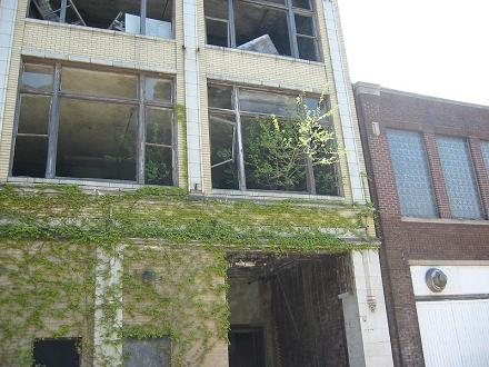 Trees growing out of a second floor window in Gary, Indiana.