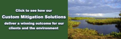 mitigation advertisement