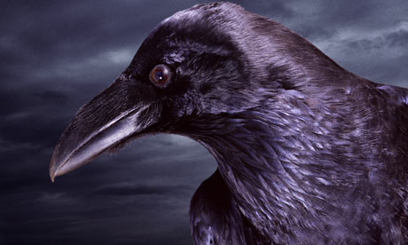 Quote The Raven Never More Poem