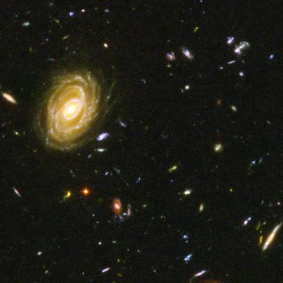 Amazoncom Hubble Ultra Deep Field  24x36 Poster