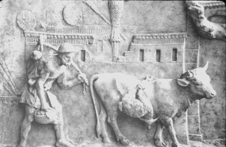 Roman farmers didn't get much glory, but they made the empire possible. Moreover, they made what followed the empire possible also.