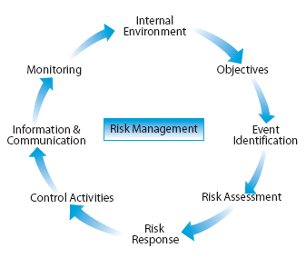 Risk Management: A Personal View | Grand Strategy: The View from ...