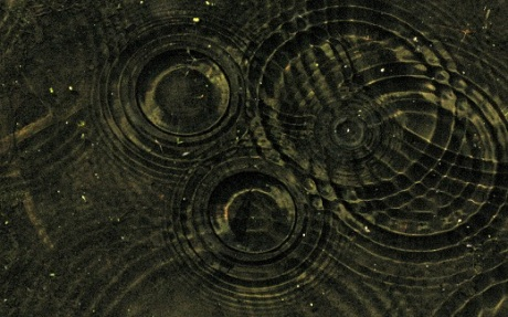 Synchronic interaction is like the ripples of rain drops in a pond, which collide with other ripples and create new patterns.