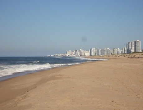 From the endless beaches of Punta del Este...