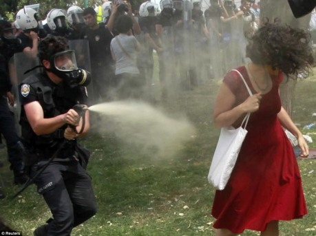 The woman in a red dress being sprayed with pepper spray by Turkish police was among the viral images that rapidly gained global prominence in social media.