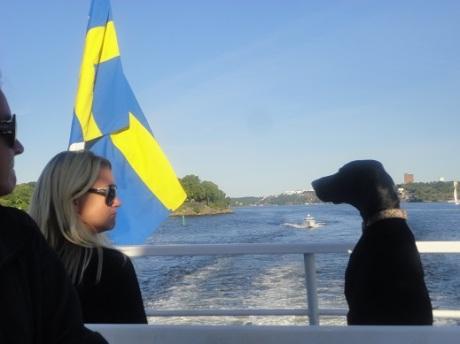 sandhamn ferry