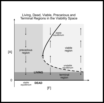 Regions in viability space. Living, dead, viable, precarious and terminal regions of the viability space. The dead region or state lies at [A] = 0, above which the living region appears. Inside the living region three different sub-regions are distinguished: the viable region (light grey) where the system will remain alive if environmental conditions don't change, the precarious region (medium grey) where the system is still alive but tends towards death unless environmental conditions change and the terminal region (dark grey) where the system will irreversibly fall into the dead region. See text body for detailed explanation. (Xabier E. Barandiaran and Matthew D. Egbert)