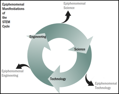 STEM cycle epiphenomena 3