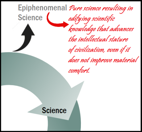 STEM cycle epiphenomena 4