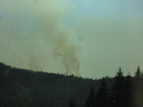 There was a forest fire north of Willits, with fire crews and helicopters actively battling the blaze.