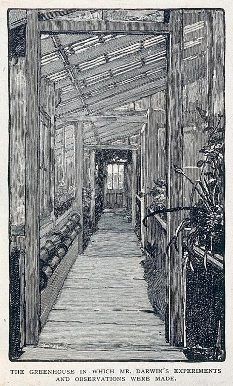 Darwin Greenhouse
