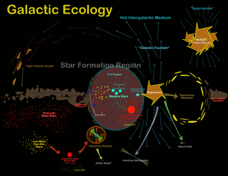 galactic ecology