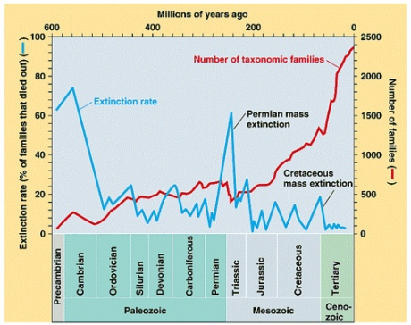 How do you quantify the life of an entire world? Higher biological taxa. This graph shows families rather than species.