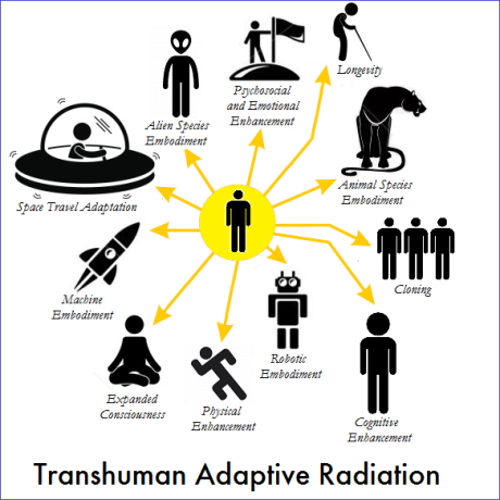 transhuman adaptive radiation 2