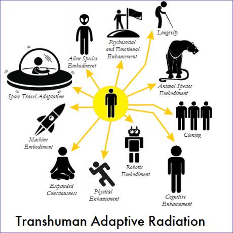 transhuman adaptive radiation 2