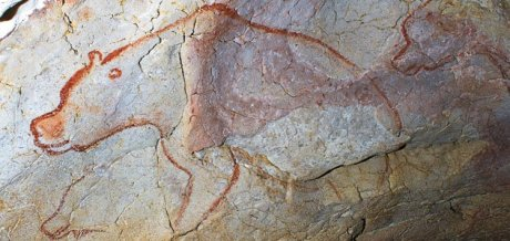An elegant rendering of a cave bear by one of our ancestors, in Chavet cave.
