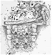 drachenloch skull vault