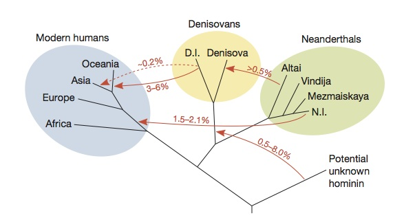 The Human World of the Upper Paleolithic