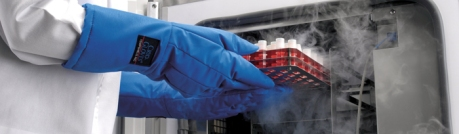 Purposeful reconstitution in the future is likely to make use of cryopreservation technologies.