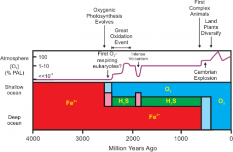 'The Great Oxygenation Event (GOE), also called the Oxygen Catastrophe, Oxygen Crisis, Oxygen Holocaust, Oxygen Revolution, or Great Oxidation, was the biologically induced appearance of dioxygen in Earth's atmosphere.'  from Wikipedia (https://en.wikipedia.org/wiki/Great_Oxygenation_Event)